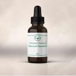 Internal Parasites Essence (10ml)
