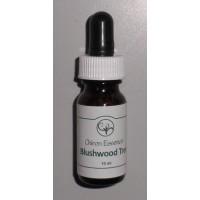 Blushwood Tree Essence - 10ml