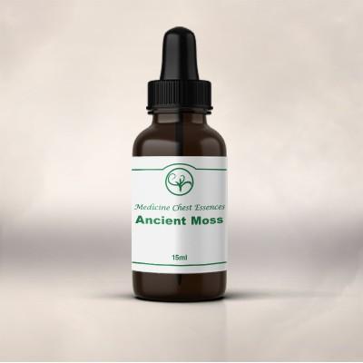 Ancient Moss (15ml)