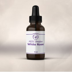 White Rose Simple (10ml)