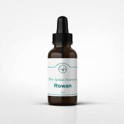 Rowan Essence (25ml)