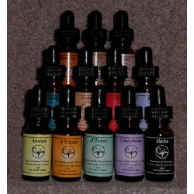 2nd Set of Essences (12 x 10ml)