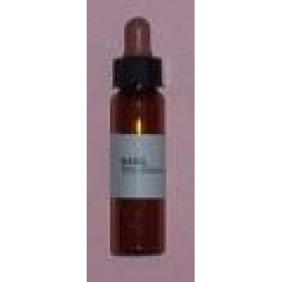 Pamper Basil Oil (10 ml)