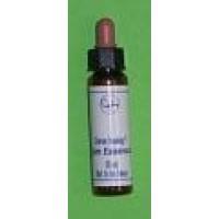 Zircon - 10ml vial