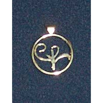 Stirling Silver Logo Pendant (large)